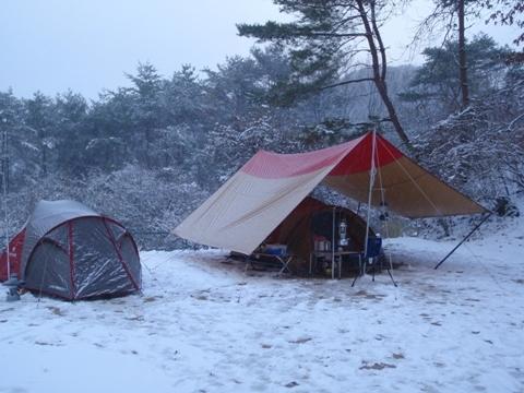 冬002.JPG